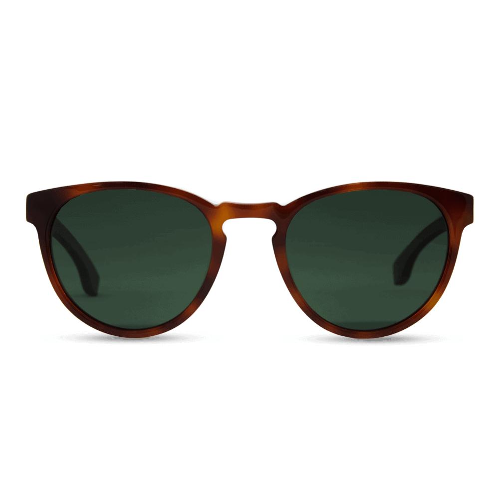 משקפי שמש אצטט - דגם ברקזיט - Acetate Classic smog tortoise