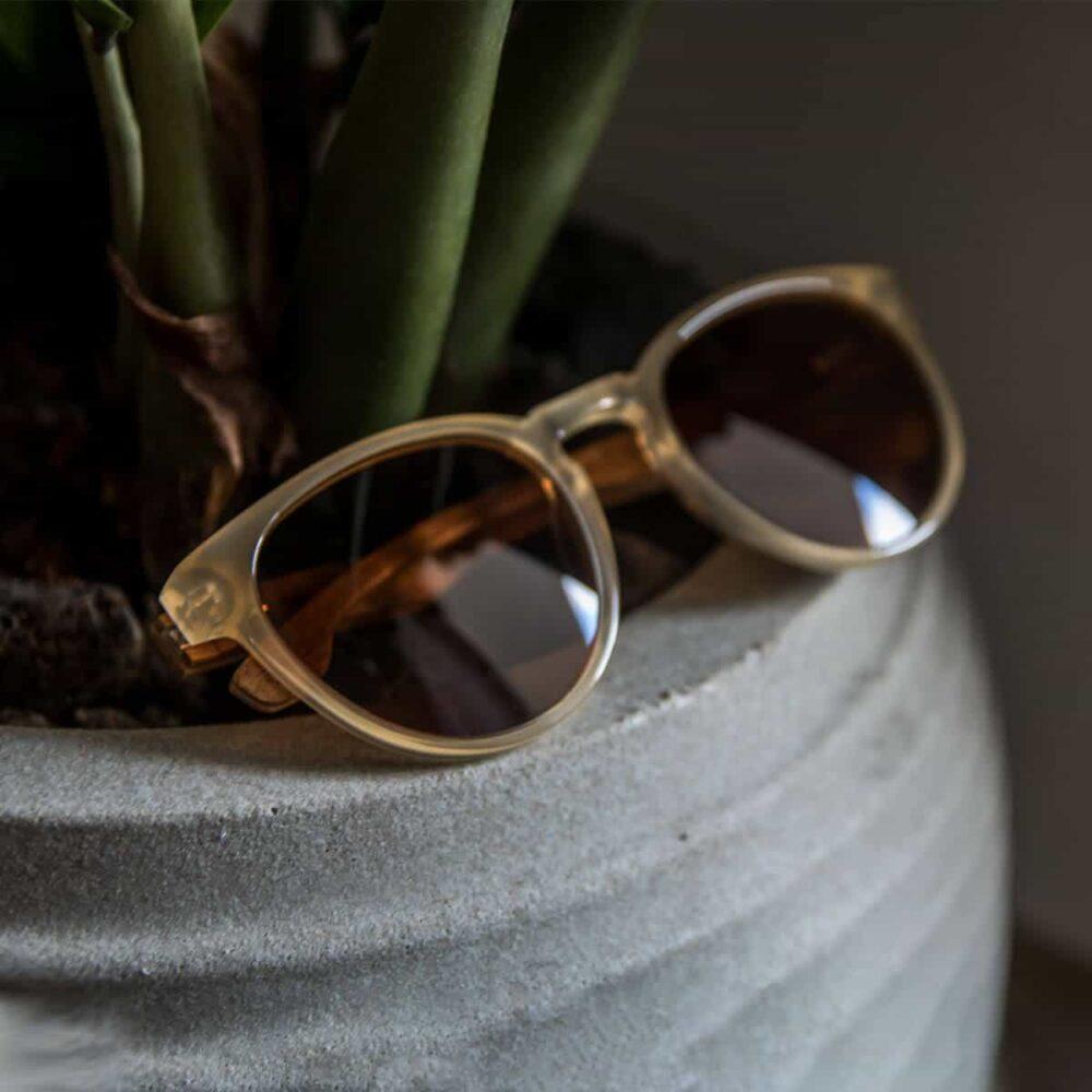 משקפי שמש מאצטט וזרועות עץ - דגם ברזיט - Acetate Ivory